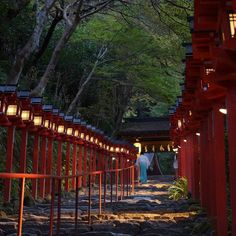 貴船神社 本宮参道 京都市左京区鞍馬貴船町 Kifune shrine Kibune Kyoto JP 2015.10.15   貴船神社本宮参道の早朝のイメージはこんな感じかな本当は夕方の撮影ですが 木々の色はまだこんな感じです紅葉はまだまだですね   #貴船神社 #本宮参道 #灯籠 #KifuneShrine #Kibune #Kyoto #icu_japan #ig_japan #jp_gallery #igersjp #team_jp_ #wu_japan #bns_japan #lovers_nippon #igs_world #ig_worldclub #igs_asia #ig_eurasia #ig_sharepoint #igworldclub #ig_today #ig_great_shots #ig_camera_united #ig_mood #worlderlust #icu_nightlife #bns_japan_nightview #japan_night_view #京都夜間写真部 by sanakyoto