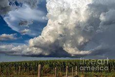 Summer Storm - photograph by Lisa Phillips fineartamerica.com #cloudscape #summerstorm #wallart