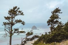 Driving along Highway 101 on the Oregon Coast- Ecola State Park