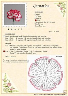 The Book of Crochet Flowers 1_54 (494x700, 279Kb)