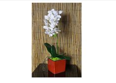 White Silk Orchid, Natural Touch Mini Phalaenopsis in Red Ceramic Vase by OrchidOriginalDesign on Etsy