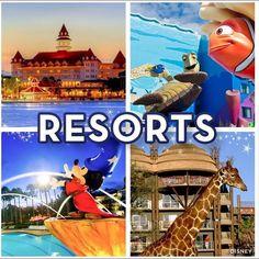 Cual es tu favorito, Disney's Grand Floridian Resort & Spa, Disney's Art of Animation Resort, Disney's All Star Movies Resort o Disney's Animal Kingdom Lodge ⁉️❤️. Para reservaciones puedes contactarnos  info@enorlando.com ☎️ 321-299-6847 / 407-230-7148 #honeymoom #honeymoon #honeymooners  #destination #destinations #destinationplanner  #destinationhoneymoon #romancetravel  #disneytravelplanner #disneytravel #disneycruise #disneygram #miami #usa #puertorico #c