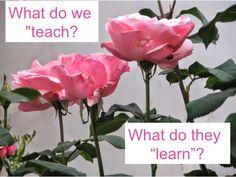 Obsessed with How Teachers Teach