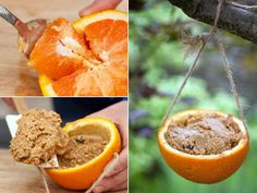 "Natural Birdfeeders at HGTV.com    Stuff a scooped-out orange with a few simple ingredients and create a yummy homemade feeder for the birds. The kids will love making the goopy mixture and hanging the colorful ""baskets"" from trees and shrubs."