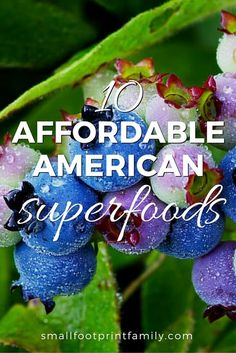 Before you spend your paycheck on the latest fashionable food with a name you can't pronounce, try these ten affordable, eco friendly, domestic superfoods. #paleo #paleodiet #superfoods #vegan #vegetarian #realfood #naturalliving #nutrition #foodismedicine #healthyliving