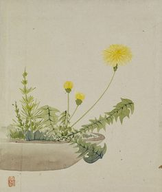 Yoshizawa Setsuan (1809–1889) TitleLeaf from Album Depicting Birds, Flowers, Landscapes, and Flower Pots Date1876