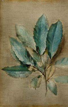 John Ruskin (1819-1900) this would be Really pretty with a paper or tissue flower in the center.