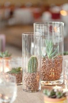 A cactus is a superb means to bring in a all-natural element to your house and workplace. The flowers of several succulents and cactus are clearly, their crowning glory. Cactus can be cute decor ideas for your room. Succulent Centerpieces, Succulent Terrarium, Wedding Centerpieces, Succulent Arrangements, Simple Centerpieces, Terrarium Ideas, Centerpiece Ideas, Fiesta Party Centerpieces, Mexican Centerpiece