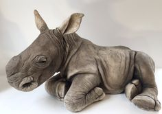 The Wildlife Artist of the Year winner has work on display in Baldock, Hertfordshire, including this stunning sculpture of a baby rhino.