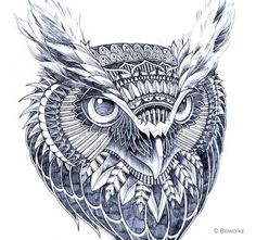 Bazen hayvanlar bile biz tasarımcılara ilham kaynağı olabiliyor. İlham alabileceğiniz baykuş kullanılarak yapılmış tasarımları, logoları, fotoğrafları bir araya toplamaya çalıştık. Bu sevimli kuşta…
