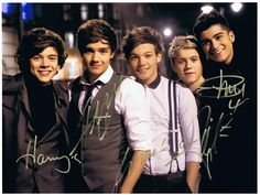 One Direction Authentic Group Signed 8x10 Autograph Photo - Niall Horan, Zayn Malik, Liam Payne, Harry Styles, Louis Tomlinson
