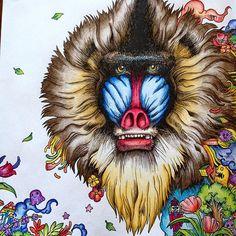 #baboon #animorphia #kerbyrosanes #arttherapy #coloringforadults #coloredpencil #adultcoloring #adultcoloringbook