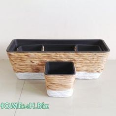 Home24h co,.ltd: Flower pot hyacinth Home24h -Hyacinth Flower Pots -Home24h.biz