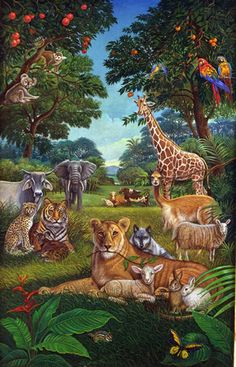 Jungle Art, Jungle Animals, Most Beautiful Animals, Beautiful Birds, Jungle Images, Paradise Pictures, Jungle Illustration, Forest Drawing, Animal Wallpaper