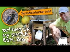 How To Start A Black Soldier Fly Larvae Composting Bin Rocket Stove Design, Diy Rocket Stove, Rocket Stoves, Composting Methods, Black Soldier Fly, Energy Technology, Emergency Preparedness, Sustainable Living, Composters