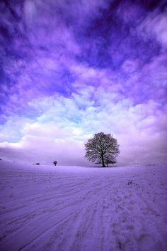 Яркая зима, игра чистых красок - Красота, вдохновленная природой