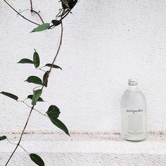 Good morning ! 🌿🍶 #greenwaybiotech #green
