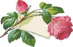 flowerscardset2009.png