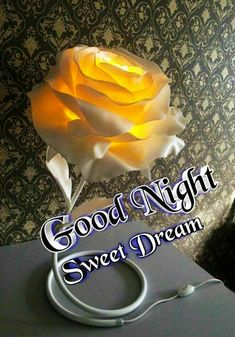 Good Night Images For Whatsapp Good Night Msg, Good Night I Love You, Good Morning Beautiful Images, Good Night Prayer, Good Night Friends, Good Night Blessings, Good Night Sweet Dreams, Sweet Night, Good Night Wishes