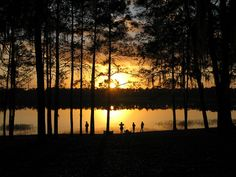 Doe Lake, Ocala National Forest, FL - our new year's campout for the last 4 years
