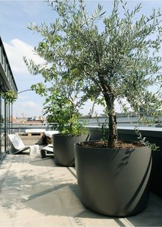 Iota Boulevard Kyoto Planter Balcony Garden, Tower Garden, Indoor Garden,  Container Gardening,