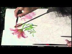 Watercolor Demonstration - Lilies Part 1 by Kris Wiltse