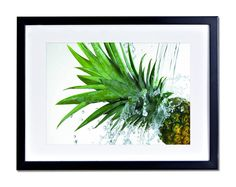 Pineapple Fruit Poster Print Tropical Exotic FRAMED MOUNTED Kitchen Healthy 170