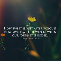 Rest Quotes, Heaven, Journey, God, Dios, Sky, Heavens, The Journey, Allah