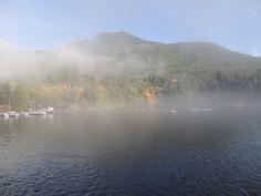 2012  fog at Saltry Bay ferry BC