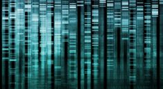 dna coding - Google Search