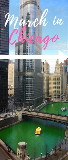 Visiting #Chicago in the month of March?  There are so many fun things to do, like the annual #saintpatricksday river dyeing and parade and the Macy's Flower Show. #Illinois