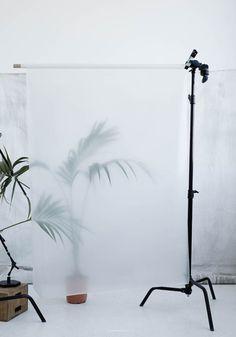 Krisitna Dam Studio Botanic posters
