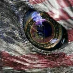 USA Marine