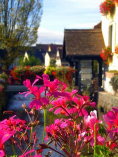 Flower Bridges of Stotzheim, Alsace France