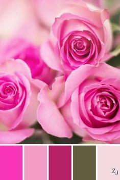 ZJ Colour Palette 497 #colourpalette #colourinspiration