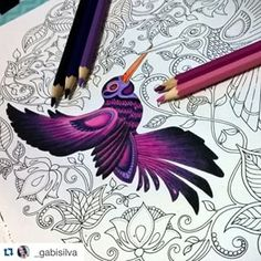 47 Ideas For Drawing Pencil Inspiration Adult Coloring Secret Garden Coloring Book, Coloring Book Art, Adult Coloring, Coloring Pages, Coloring Tips, Colorful Drawings, Cool Drawings, Pencil Drawings, Enchanted Forest Coloring Book