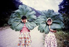 flower children.