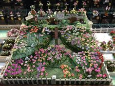 More minis please...   Fantastic mini garden.