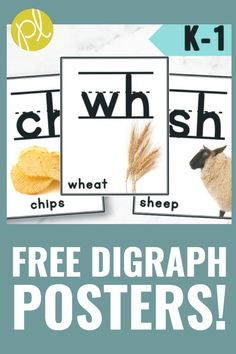 Classroom Posters - Free 8 digraph phonics visuals. Add these real photo posters to your phonics sound wall or word wall. Digraphs ch, sh, th, and wh. From Positively Learning Blog #digraphs #soundwall #phonics
