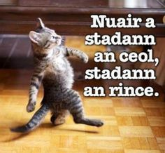 Nuair a stadann an ceol, stadann an rince - when the music stops, the dancing stops / ceol - music / rince - dance.  All good things must come to an end.