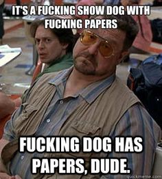 It's a fucking show dog with fucking papers Fucking dog has papers ...