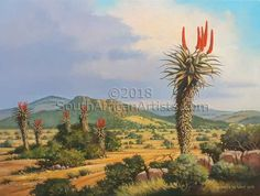 While on holiday at Malagas on the banks of the Breede River in the Southern Cape, photographed many. I was intrigued by the many aloes that grow wild in that area. Landscape Art, Landscape Paintings, Watercolor Paintings, Oil Paintings, Landscapes, Jungle Scene, The Good Old Days, African Art, Art Oil