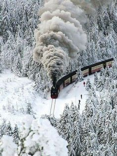 Snow Steam Train, Wernigerode, Winter in Germany Image Train, Winter Szenen, Winter White, Winter Christmas, Christmas Trees, Old Trains, Snow Scenes, Train Tracks, Winter Landscape