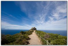 Pathway to the point at Cape Point. Photo: andre.vanrooyen