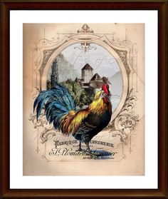 Colorful French Rooster 8x10 Print Kitchen Art Country Decor Cau