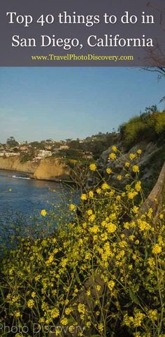 Top 40 things to do in San Diego - Fun culture, history and adventure activities in San Diego with amazing art, beaches, cool neighborhoods, attractions and other must visit only in San Diego places for anyone to enjoy. Check out the highlights below