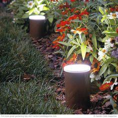Getting smart with backyard garden lighting ideas 9 – fugar Garden Lighting Diy, Led Garden Lights, Landscape Lighting, Solar Lights, Lighting Ideas, Outdoor Lighting, Garden Gates, Garden Art, Garden Design