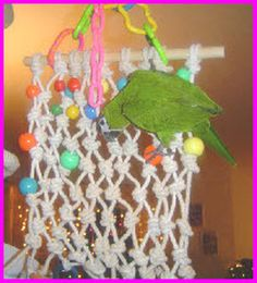 String Bird Climbing Net - PetDIYs.com