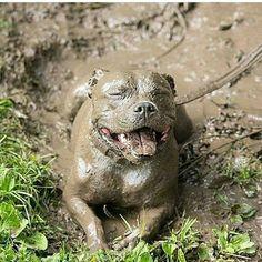 Muddy monster!
