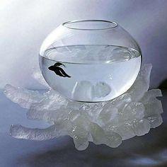 Steuben Glass & Crystal Reef Fishbowl - Michele Oka Doner - Photo